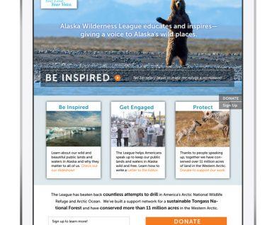 Web design for environmental nonprofit Alaska Wilderness League
