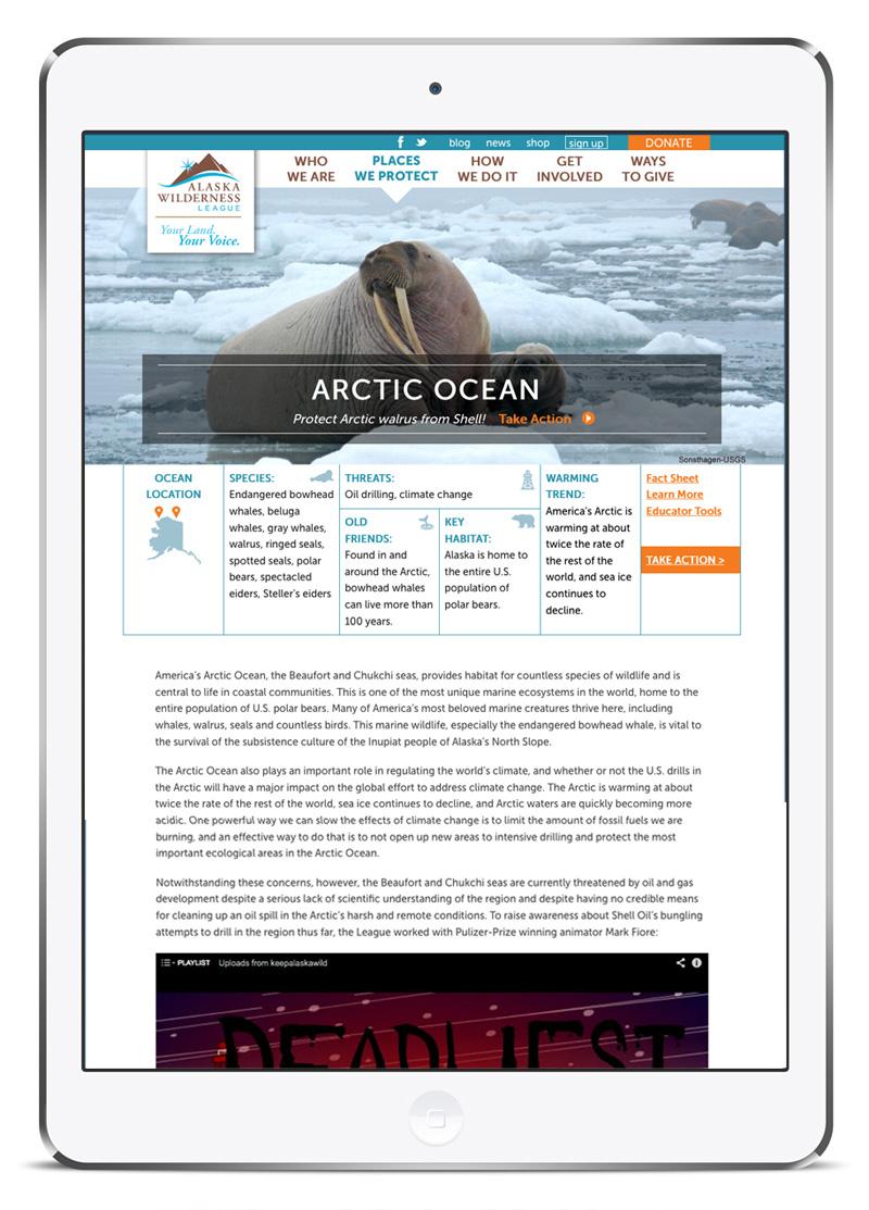 Alaska Wild web design