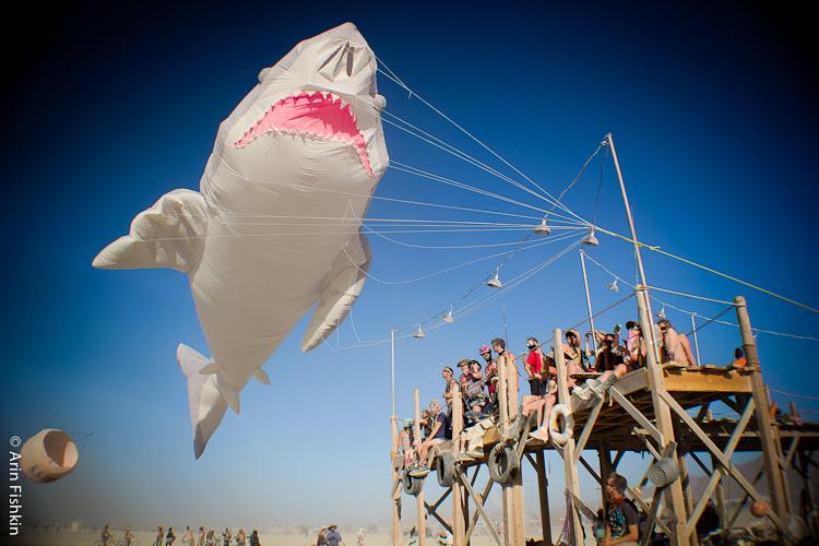 Big Shark, Burning Man