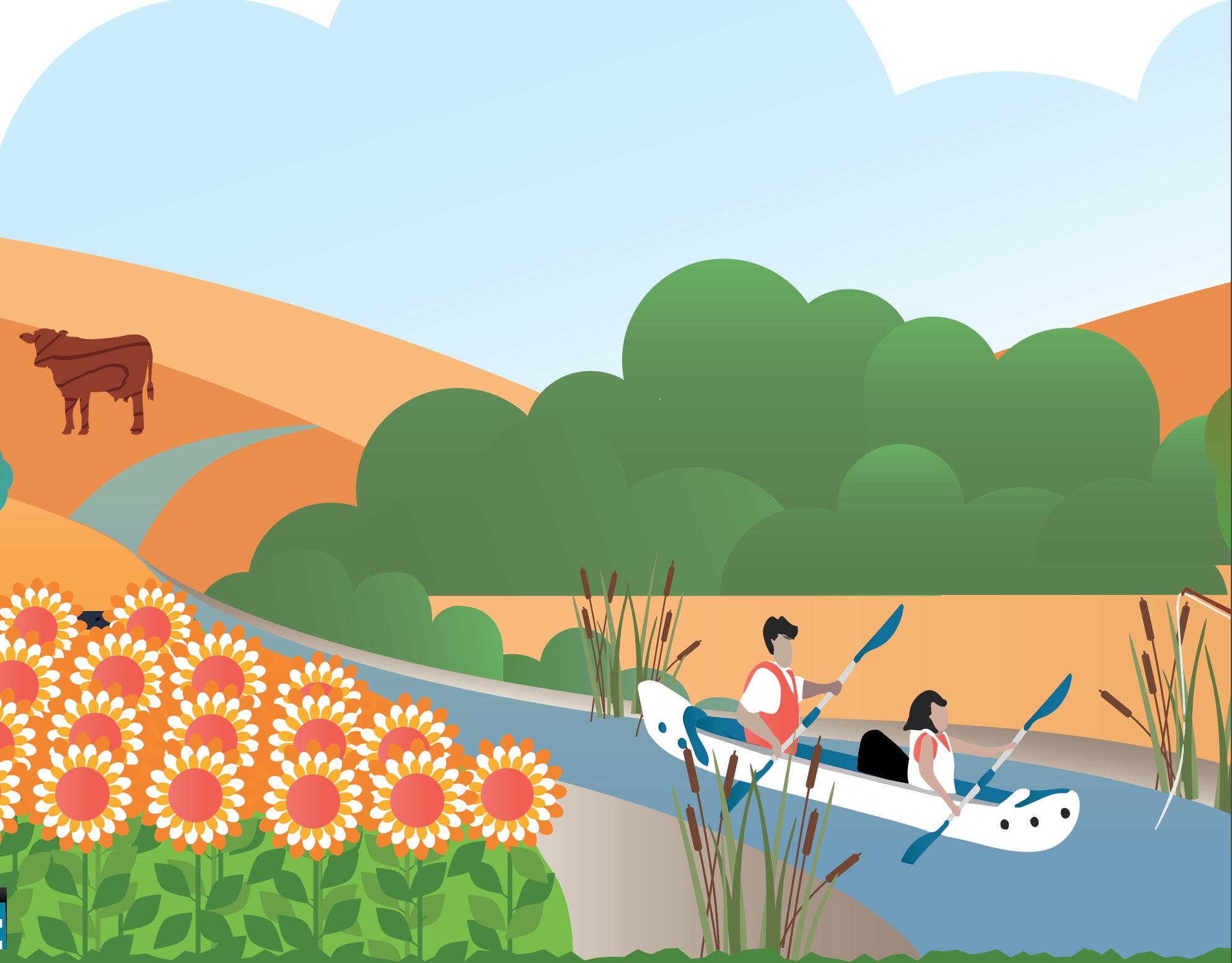 California water use Illustration